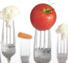 Göd | Tájékoztató az iskolai, óvodai étkezési térítési díjakról