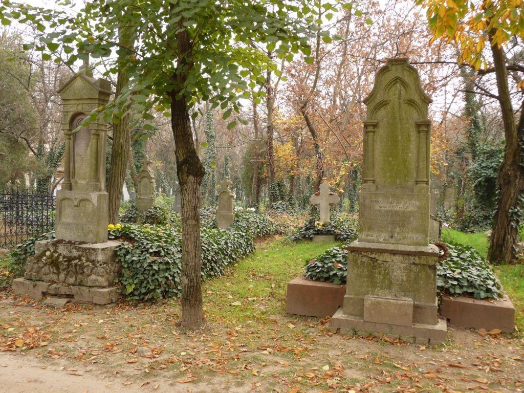 Göd | Sírhely meghosszabítás, felszámolandó sírok listája